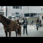 Publicidad BRAHMA - Horario de gifear