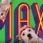 Publicidad GRANJA DE SOL - Patitas de pollo Max - Quiero patitas ! 🐶 🍗